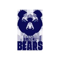 bears-bristol